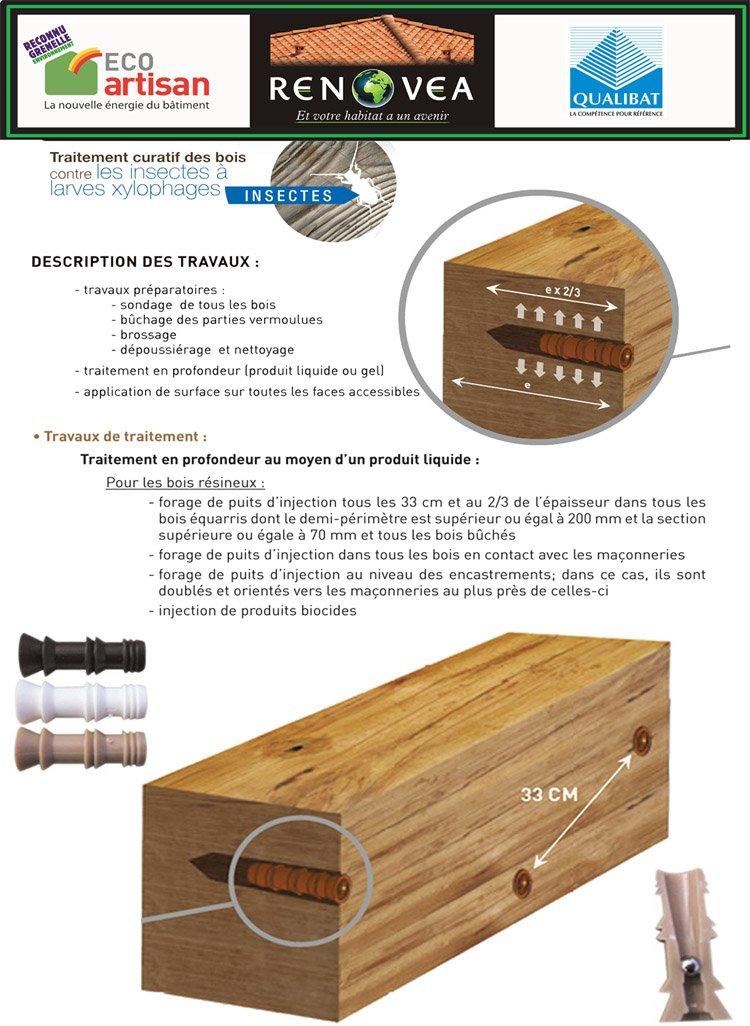 Traitement de bois var renovea 9 for Traitement des charpentes par injection